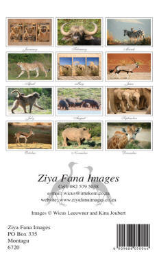 wildlife birthday calendar of South Africa -  back page